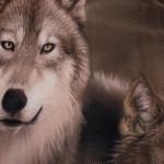 3D луксозен спален комплект Wolfs